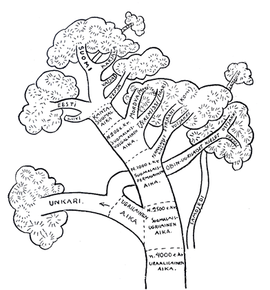 Uurali keelepuu (Kettunen 1938)